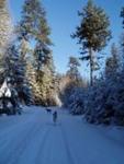 My Winter 'Vacation'