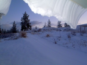 View from my snow cave