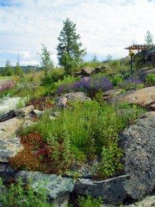 Landscape dictates plantings.