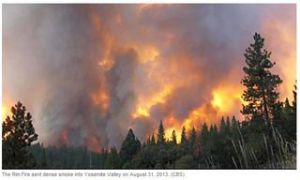 Wildland wildfire in Nevada