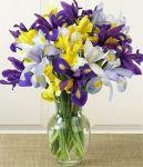 Anj's flowers